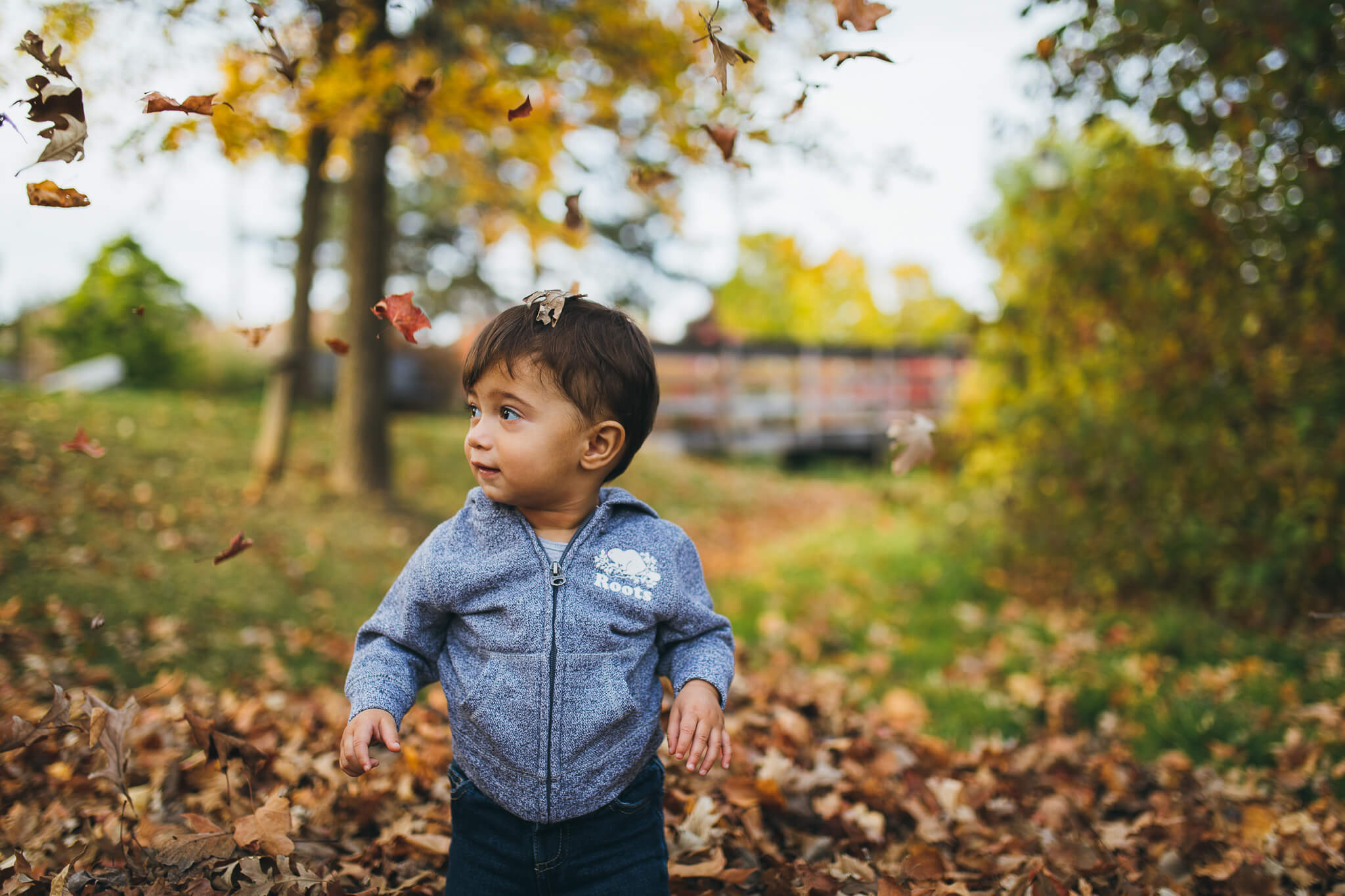 Toddler standing in leaves with colourful trees in the back during the autumn season.